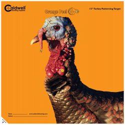 442168-12inch-turkey-target-2