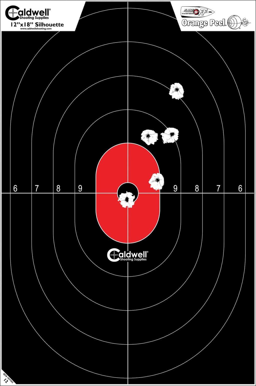 Ballistic Precision LR Target Camera System -220 volt - 12x18 center mass targer shot up