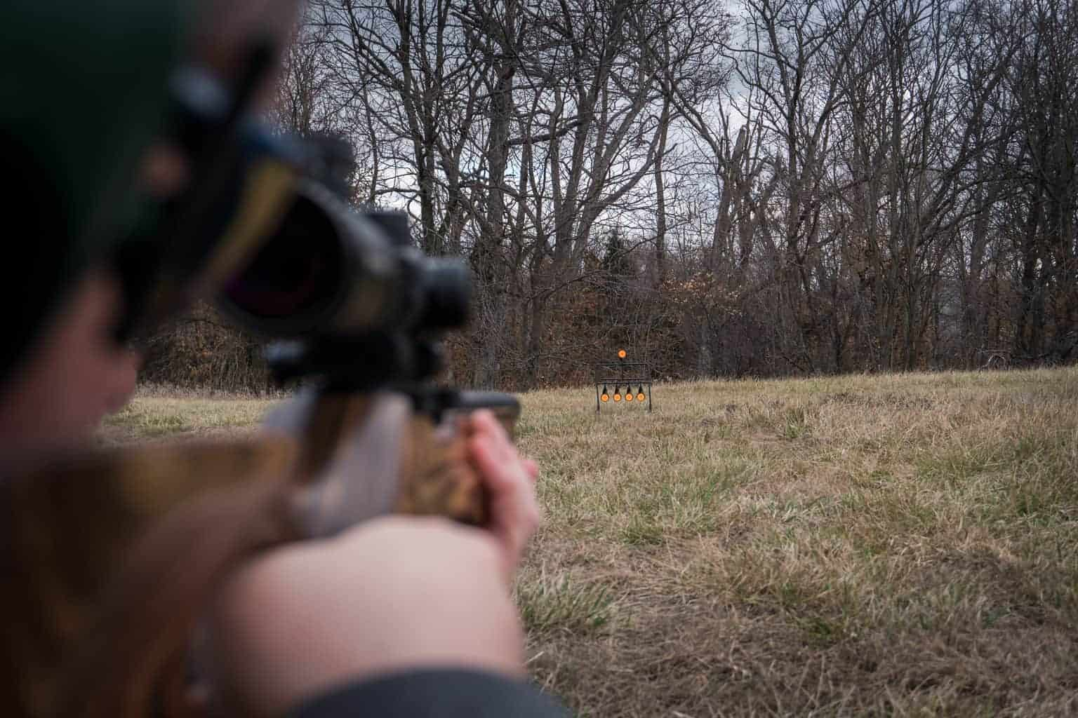 Rimfire Resetting Target - 902365 Action Rifle Shooting