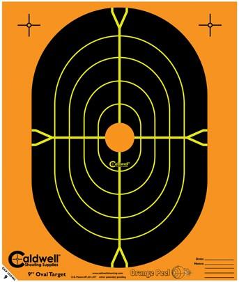 Ballistic Precision LR Target Camera System -220 volt - 9inch oval