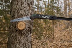 10 Ft Extendable Tree Saw - Saw Cutting 250x167
