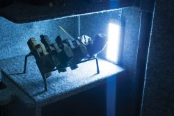 Cordless 75 LED Vault Light - 222009 side vault on shelf close 250x167