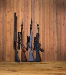 222501-action-wallmounts-guns